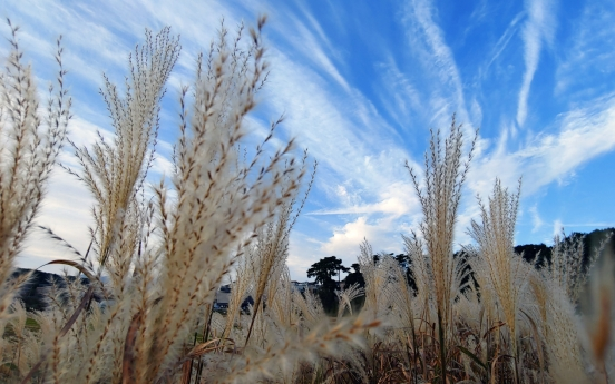 [Photo News] White clouds painted across clear, sunny sky in Gangneung