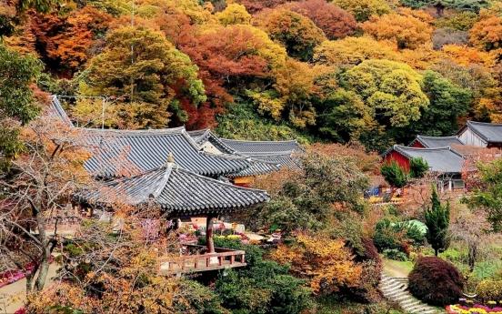 [Photo News] Gaesimsa fills with vibrant colors