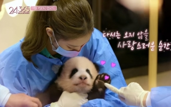 Agency cancels release of Blackpink panda footage after Chinese netizens complain