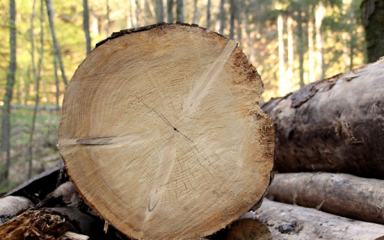 Civic group suggests cutting down old trees to tackle climate change