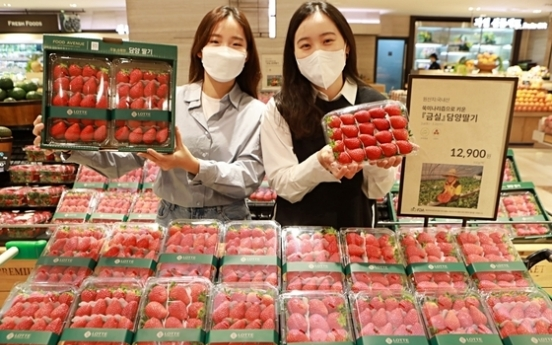 Exports of strawberries up 25% in Jan.-May period