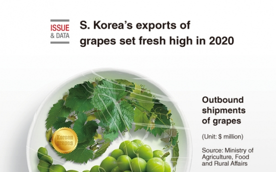 [Graphic News] S. Korea's exports of grapes set fresh high in 2020