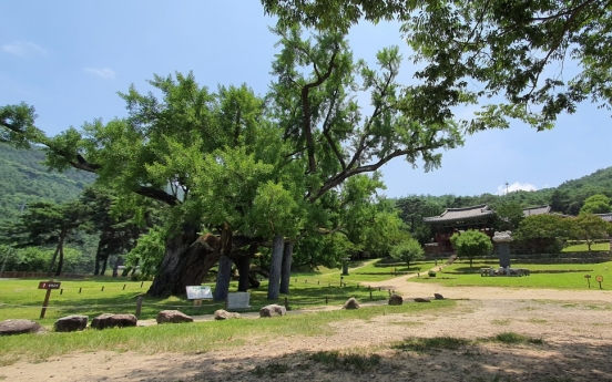 Rediscovering Joseon's Neo-Confucian academies
