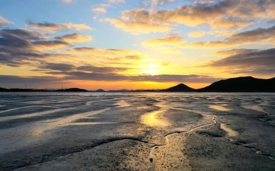 Committee to discuss Korea's bid for tidal flats as Natural World Heritage