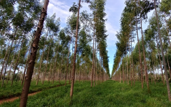 Forestry agency earns carbon credits from overseas efforts