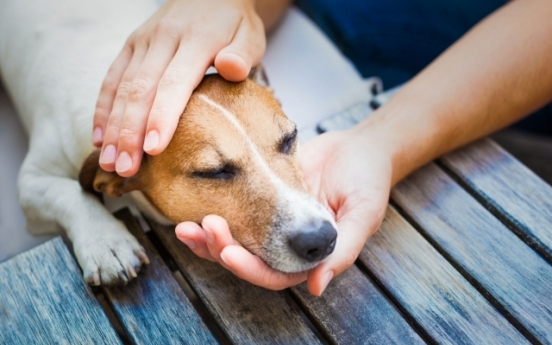 South Korea aims to raise pet registration rate to 70%
