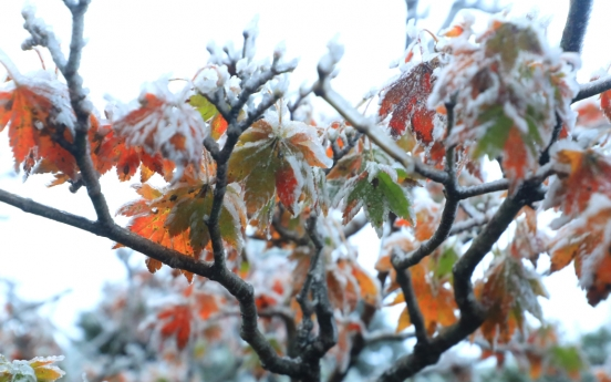 Seoul logs coldest mid-October morning in 67 years