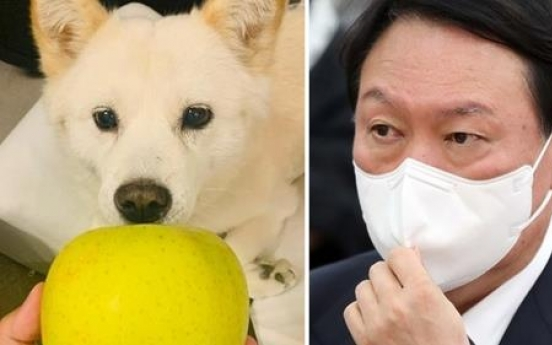 Yoon accused of 'mocking' nation with pic of dog with apple