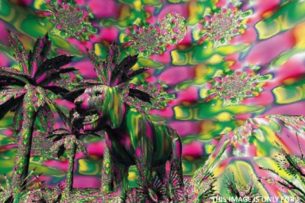 Digital artist Cody Choi questions nature of 'digital art'