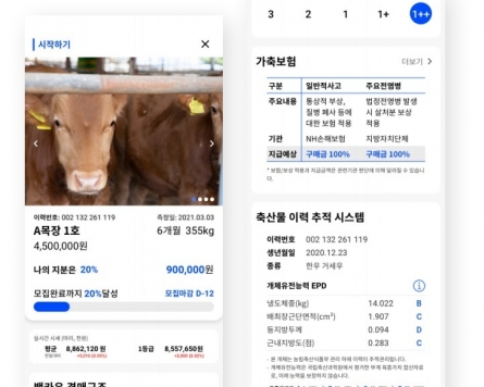 [Feature] From cows to Rolex, young investors in Korea eye new alternative investment