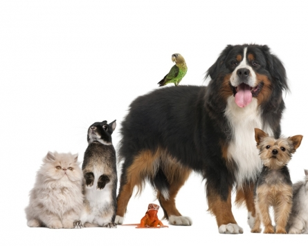 Presidential hopefuls vying to win support of pet lovers