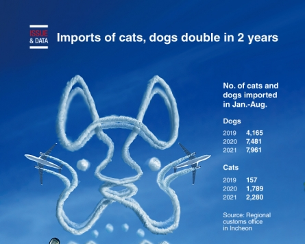 [Graphic News] Imports of cats, dogs double in 2 years