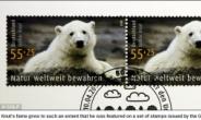 독일의 '스타 아기 북극곰' 크누트 돌연사