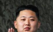 """""""北김정은 작년 9월 결혼했다"""""""
