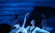 '발레가 어렵다고?'…발레축제 100배 즐기기 가이드 라인