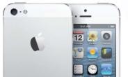 [아이폰5]잡스 없는 '아이폰5'는 …