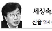 <세상 속으로 - 신율> '정권 교체' 아닌 '캠프 교체'