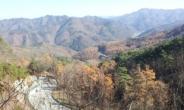 [박인호의 전원별곡] 제 1부 땅 구하기<53> 행복한 전원생활 키워드 '건강 · 장수 · 풍수'