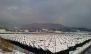 <박인호의 전원별곡> 제3부 전원일기<39>추위와 눈보라가 몰아치는 12월...그러나 시련 속에 진정한 쉼이 있다