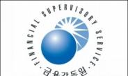 금감원 8일부터 '금융교육 전문강사' 인증심사 신청