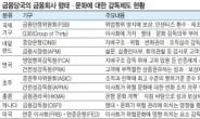 """금감원 """"금융사 문화도 감독…선진국처럼"""""""