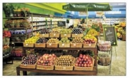 [aT와 함께하는 글로벌푸드 리포트] 식물기반·클린라벨…브라질 건강식품 트렌드