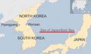 '일본해' 고집하던 英 BBC 지도에 '동해' 표기 첫 등장