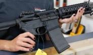 가족 위해서라면…美임신부, 반자동 소총 쏴 무장강도 격퇴