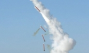 [김수한의 리썰웨펀]軍, 마침내 '한국형 사드' 만들기로 결정…K-11 복합형소총 개발은 중단