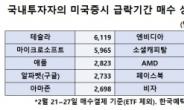 발빠른 테슬라 韓투자자들…폭락장에 740억 더 샀다