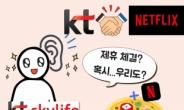 """""""형(KT), 넷플과 손잡아주세요!"""" 스카이라이프가 애절한 까닭[IT선빵!]"""