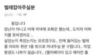 """""""바퀴벌레 ㅠㅠ 대신 잡아주면 3만원 드려요"""" [IT선빵!]"""