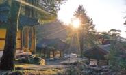 왕건·이성계가 계시받은…상이암 '왕의숲'서 새 희망을 품다