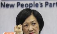"""홍콩 친중파 의원 """"英 시민권 등 이중국적자 거주·투표권 금지해야"""""""