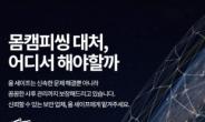 '올세이프', 나홀로족 몸캠피싱 피해 줄인 피씽 솔루션 제공