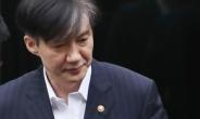 """하루만에 사라진 '조국 딸 의사국시 합격 축하' 댓글…""""응시자격 없다"""" SNS 논란"""
