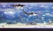 국내 최대 해양생물관, 한화 '아쿠아플라넷 광교' 오픈