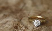 [인더머니] 세계부호들 '보복쇼핑'에 다이아몬드 값 10년래 최고