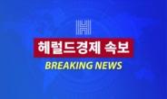 [속보] 사드기지 입구서 주민 해산 시작…충돌 우려