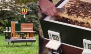 맥도날드 가는 꿀벌? 19禁 비닐봉지?… 아이디어로 주목받았던 친환경 방식들[식탐]