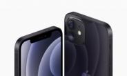 삼성폰 간신히 1위 수성…'비싼폰'은 애플 아이폰 독차지! [IT선빵!]