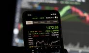 24조 더 팔아야 하는 국민연금, 해외주식 폭풍매수 국내 투자자