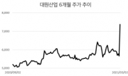 [특징주] 대원산업 '카니발' 훈풍타고 상한가 기록