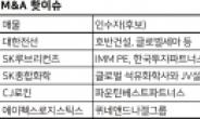 """[M&A핫이슈] """"우량회사 잡자"""" 입찰 흥행…'차이나 엑시트'도 눈길"""