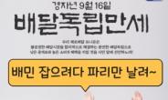 """이재명도 뛰어든 공공배달앱…배달의민족 잡겠다더니 """"파리만~"""" [IT선빵!]"""
