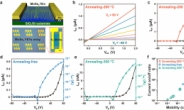 UNIST·성균관대 연구진, 차세대 반도체 소재 합성 기술 개발