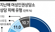 """한국여성의전화 """"작년 3만9000건 상담...가정폭력 40%로 증가"""""""
