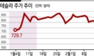'날개잃은' 성장주 신화 테슬라, 추락하는 이유 있다