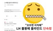 """""""김주임도 블라인드 해? 웬만하면 삭제해"""" LH발 '단속령?' [IT선빵!]"""