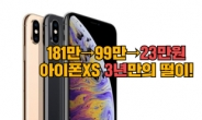 """""""181만→99만→23만원"""" 아이폰XS 뒤늦은 '최후의 떨이' [IT선빵!]"""